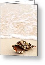 Seashell And Ocean Wave Greeting Card