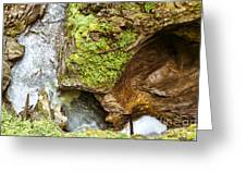 Stanghe's Waterfalls Greeting Card