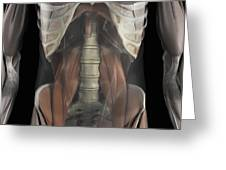 The Psoas Muscles Greeting Card