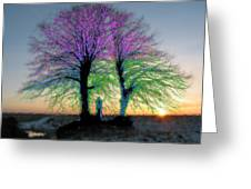 Trees Aglow Greeting Card