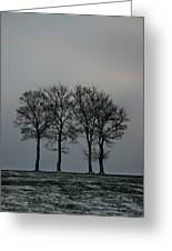 4 Trees In A Winters Landscape Greeting Card