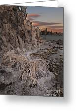 Tufa Formations, Mono Lake, Ca Greeting Card