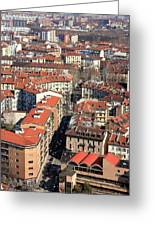 View Of Turin Greeting Card