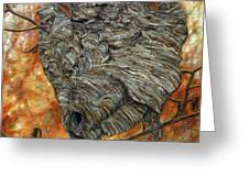 Wasp Nest Greeting Card