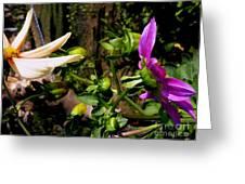 Love Flowers Greeting Card