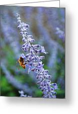 #russiansage Greeting Card
