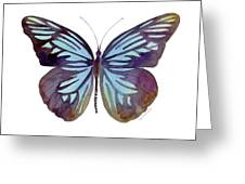 45 Pareronia Tritaea Butterfly Greeting Card by Amy Kirkpatrick
