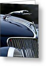 Classic Ford Detail Greeting Card