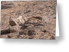 White Desert Greeting Card
