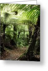 Jungle 2 Greeting Card
