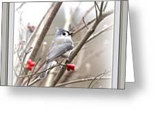 4817-003 - Fb Greeting Card