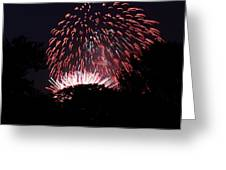 4th Of July Fireworks - 011313 Greeting Card