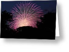 4th Of July Fireworks - 01132 Greeting Card
