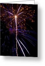 4th Of July Fireworks Greeting Card by Ray Devlin
