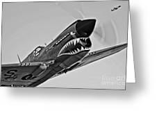 A Curtiss P-40e Warhawk In Flight Greeting Card