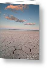Alvord Desert, Oregon Greeting Card