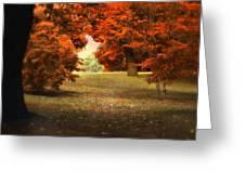 Autumn Ablaze Greeting Card