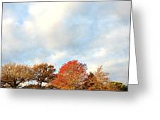 Autumn Greeting Card