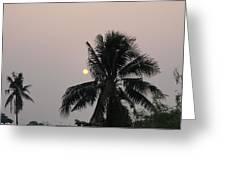 Beautiful Evening Greeting Card by Gornganogphatchara Kalapun