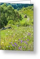 Carpathians Landscape Greeting Card