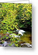 Cherry Falls Elk River Greeting Card