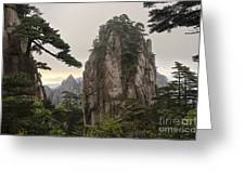 Chinese White Pine On Mt. Huangshan Greeting Card