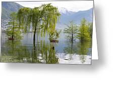 Flooding Alpine Lake Greeting Card