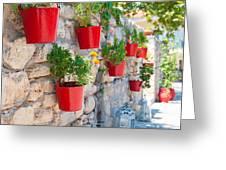 Flower Pots Greeting Card