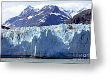 Glacier Bay Alaska Greeting Card
