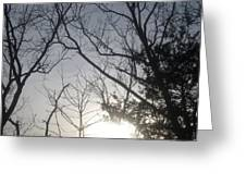 God Made Trees Greeting Card