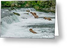 5 Grizzlies Greeting Card