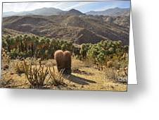 Indian Canyons Greeting Card
