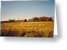 Michigan Barn Greeting Card