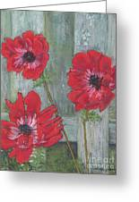Red Poppies Greeting Card