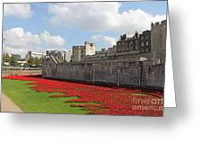Remembrance Poppies At Tower Of London Greeting Card