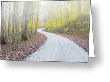 Road Passing Through A Forest Greeting Card