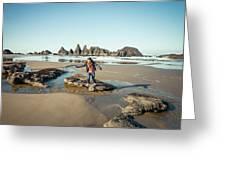Seal Rock Beach Greeting Card