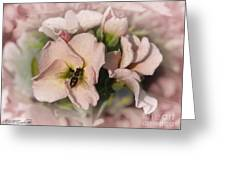 Single Peach Stocks From The Vintage Mix Greeting Card