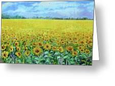 Sunflower Field Under Blue Skies Greeting Card
