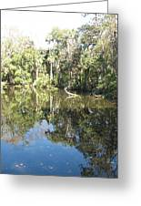 Swamp Reflection Greeting Card