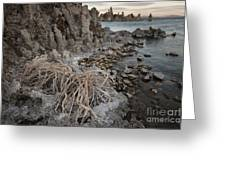 Tufa Formations, Mono Lake, Ca Greeting Card