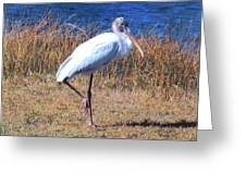 Woodstork Greeting Card