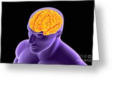Conceptual Image Of Human Brain Greeting Card