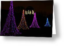 Festival Of Lights - Christmas At The Botanical Gardens Greeting Card