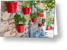 Flower Pots 2 Greeting Card