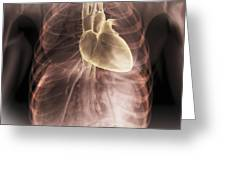 Heart Within The Chest Greeting Card