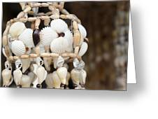 Sea Shell Decorations Greeting Card