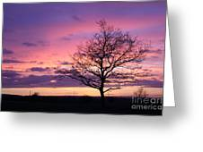 Spectacular Sunset Epsom Downs Surrey Uk Greeting Card