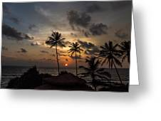 Sunset And Palm Tree Greeting Card