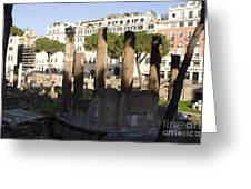 The Sacred Area Of Largo Argentina Greeting Card
